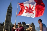 Canada Senate Legalizes Recreational Marijuana